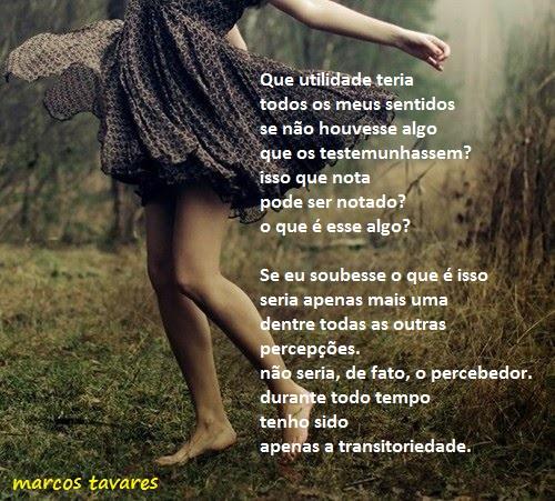 transitoriedade 01